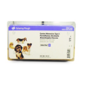 Vaccine-Schering-Bordetella Intranasal Canine, 25x1dose/pack, Intra-Trac 3
