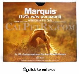 RXV MARQUIS PASTE 127G SYRINGE
