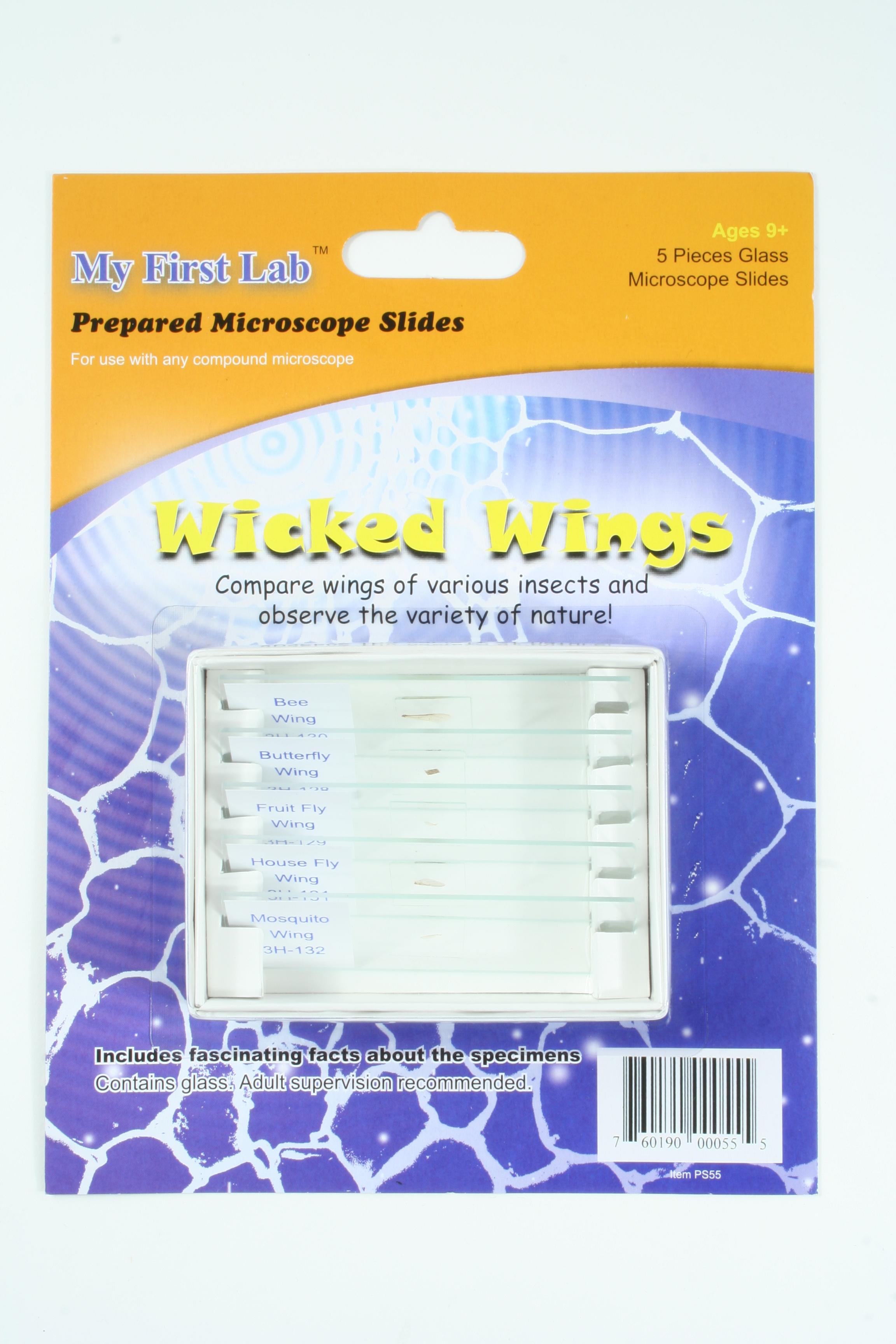 WICKED WINGS 5PC SLIDE SET,EA