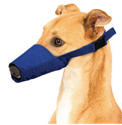 Long-Snouted Quick Muzzle For Dogs, Medium, Blue