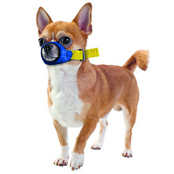 MUZZLES,XXSMALL COLOR-CODED QUICK MUZZLE FOR DOGS