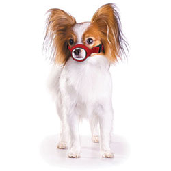 MUZZLES,EX-SMALL QUICK MUZZLE FOR DOGS RED
