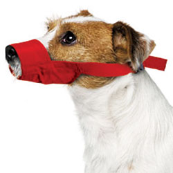 Quick Muzzle For Dogs, Small, Red