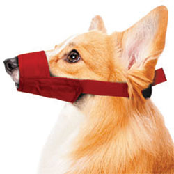 MUZZLES,MEDIUM QUICK MUZZLE FOR DOGS RED