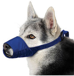 Large Color-Coded Quick Muzzle For Dogs