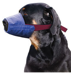 Color-Coded Quick Muzzle For Dogs, XX-Large