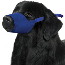 Quick Muzzle For Dogs, XXX-Large