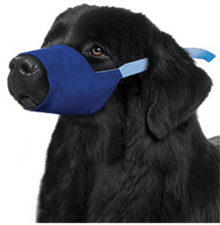 Color Coded Quick Muzzle For Dogs, XXX-Large