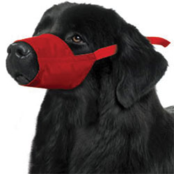Quick Muzzle For Dogs, XXXLarge, Red
