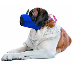 5XLarge Color-Coded Quick Muzzle For Dogs