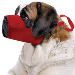 5XL Quick Muzzle For Dogs Red