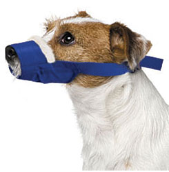 Cozy Quick Muzzle For Dogs, Small, Blue
