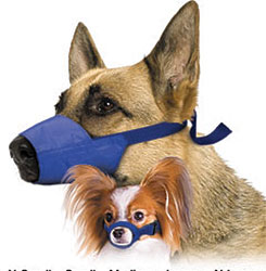 Quick Muzzle Set for Dogs, Set of 5 (S, M, L, XL, Jumbo), Blue