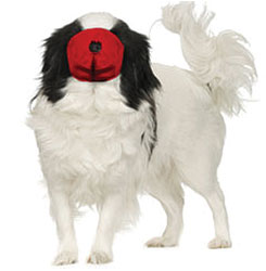 MUZZLES,SMALL/RED PUG-NOSED QUICK MUZZLE FOR DOGS