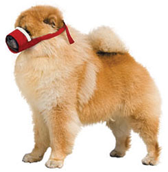 Cozy Quick Muzzle For Dogs, Small Chow, Red