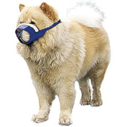 Cozy Quick Muzzle For Dogs, Medium Chow, Blue