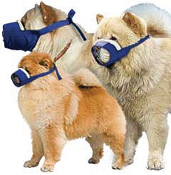 MUZZLES,3- QUICK MUZZLE SET CHOW COZY/BLUE