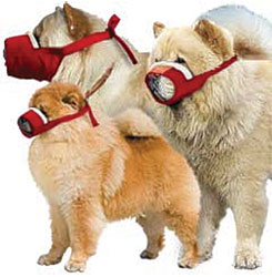Quick Muzzle Cozy, Chow, Set of 3, Red