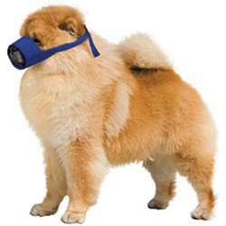 Small Chow Quick Muzzle For Dogs