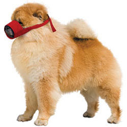 MUZZLES,SMALL CHOW QUICK MUZZLE FOR DOGS RED