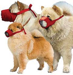 Quick Muzzle For Dogs, Set of Chow, Red