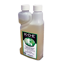 KOE Concentrate 8oz