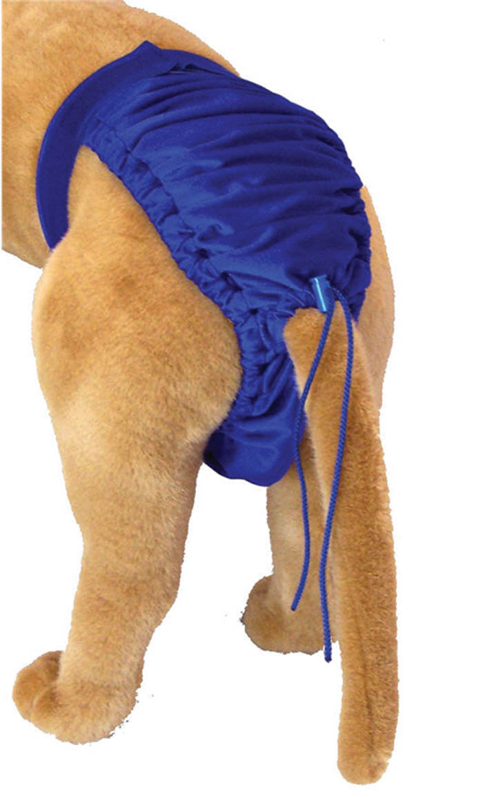 DIAPER WRAP,DOGGIE SWIMWEAR,LARGE