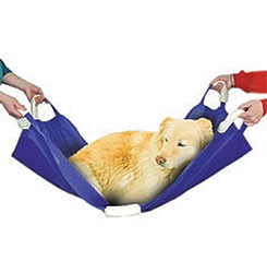 Animal Stretcher