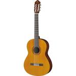Guitars-Ukulele-Basses