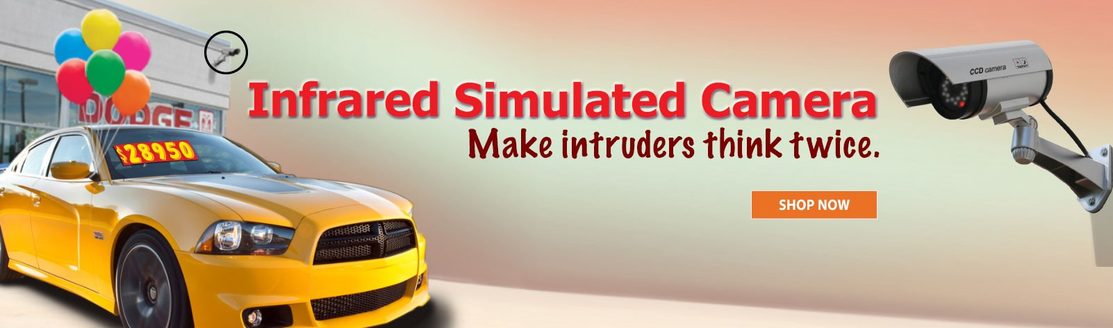 Make intruders think twice with our Simulated Camera.