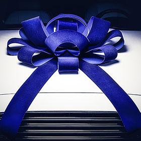 1301540-blue_velvet_ez544