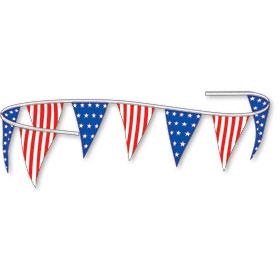 Americana Triangle Plastic Pennant