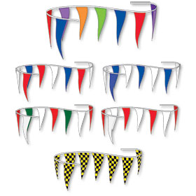 Multi Color Spectrum Pennant