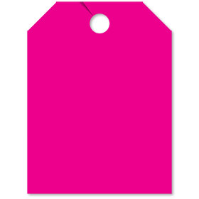 Blank Rear View Mirror Tags - Fluorescent Pink