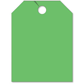 Blank Green Fluorescent Rear View Mirror Tags