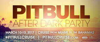 Pitbull After Dark Party