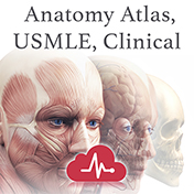 Netters Anatomy Atlas, USMLE, Clinical