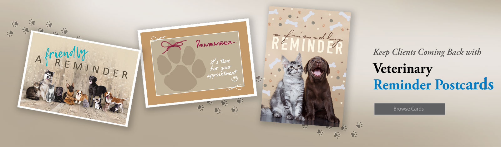 Veterinary Clinic Postcards
