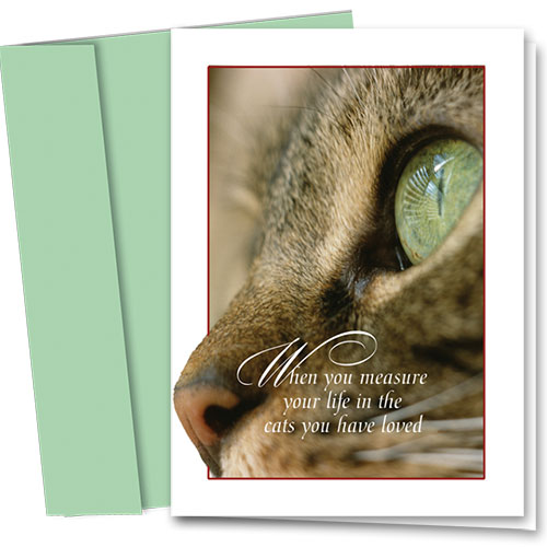 Pet Sympathy Cards - Cats You Loved