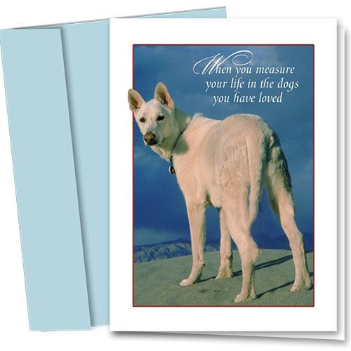 Dog Sympathy Cards - Dogs You Loved