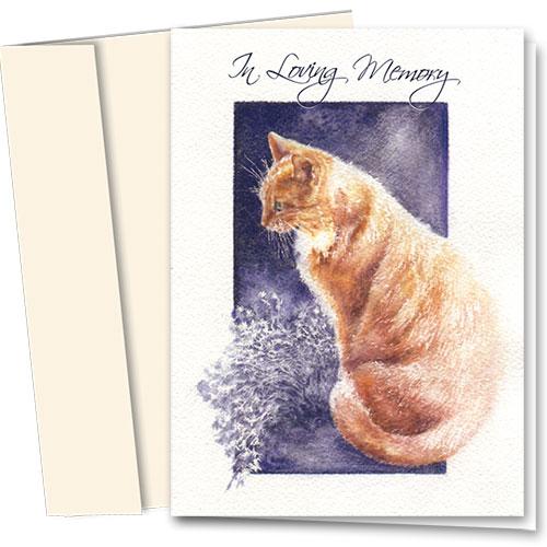 Pet Sympathy Cards - Sunlit Memory