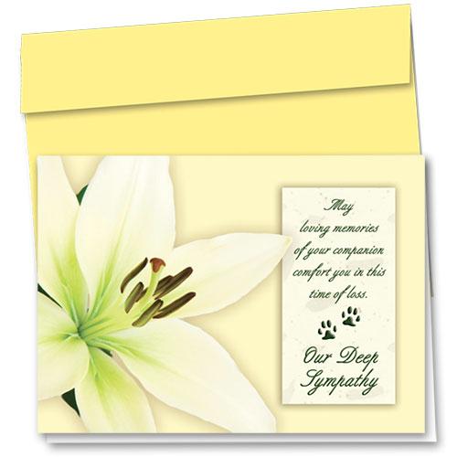 Pet Sympathy Cards - Lily Sympathy