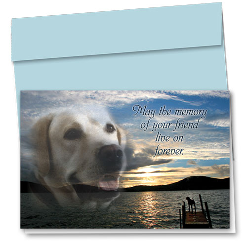 Dog Sympathy Cards - Sunset Lake