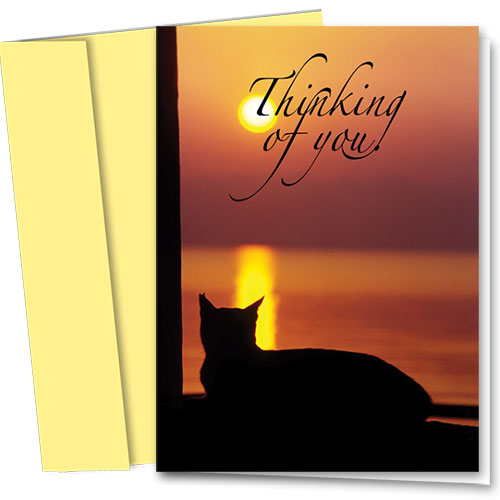 Pet Sympathy Cards - Cat Silhouette