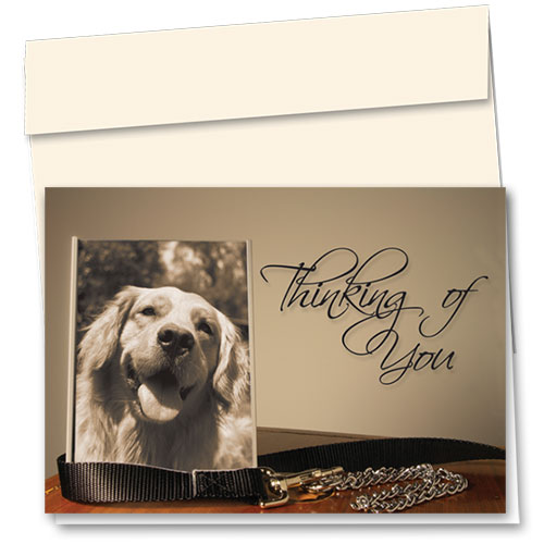 Dog Sympathy Cards - Cherished Keepsake