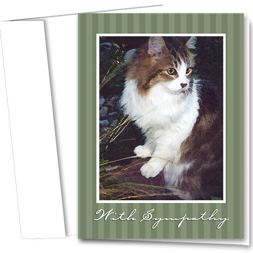 Cat Sympathy Cards - Gentle Paws