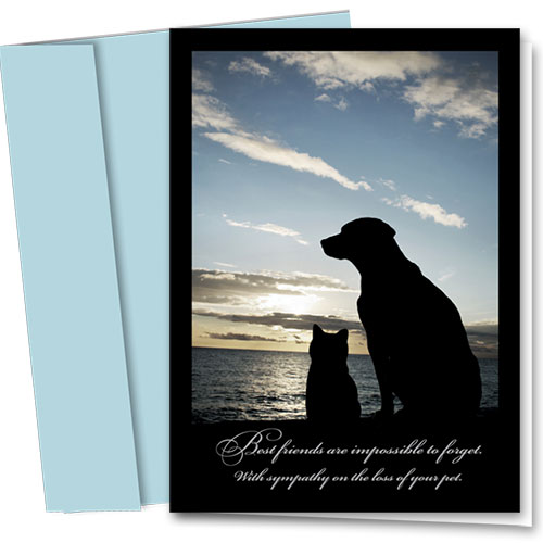 Pet Sympathy Cards - Impossible to Forget
