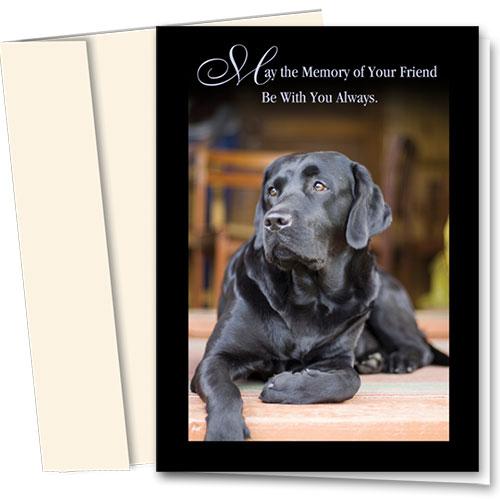 Dog Sympathy Cards - Black Lab