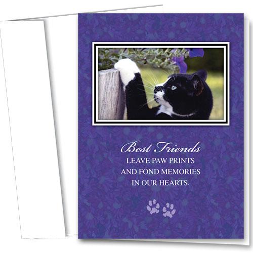 Cat Sympathy Cards - Mittens Sympathy