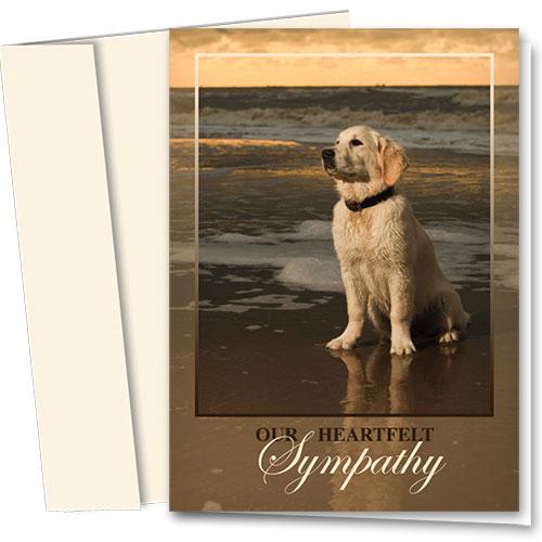 Dog Sympathy Cards - Golden Goodbye
